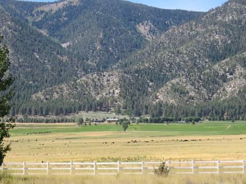Carson Valley 11