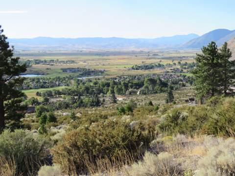 Carson Valley 14
