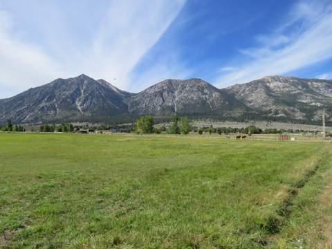 Carson Valley 16