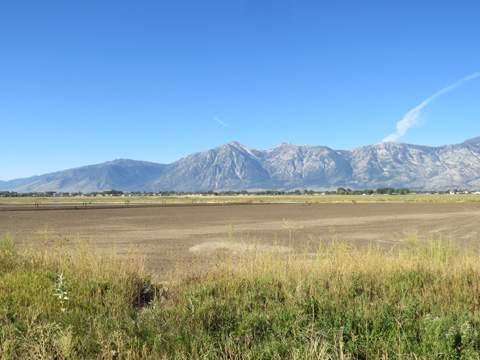 Carson Valley 4